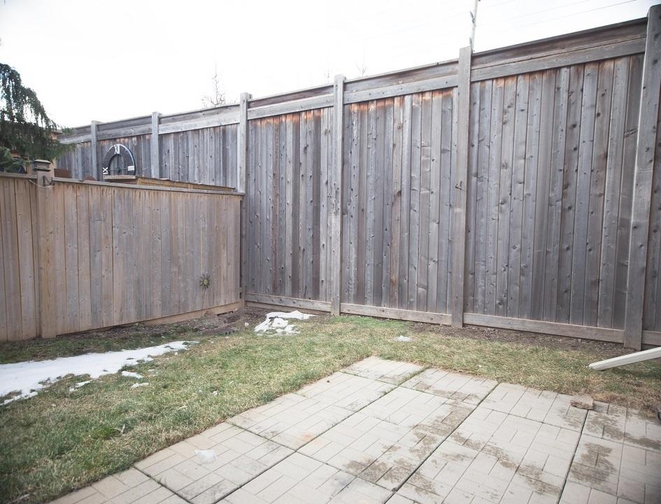 18 backyard